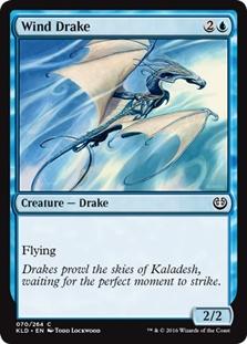 Wind Drake